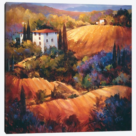 Evening Glow Tuscany Canvas Print #NAO2} by Nancy O'Toole Canvas Art
