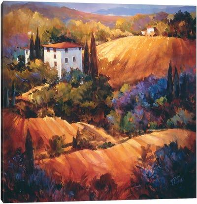 Evening Glow Tuscany Canvas Art Print
