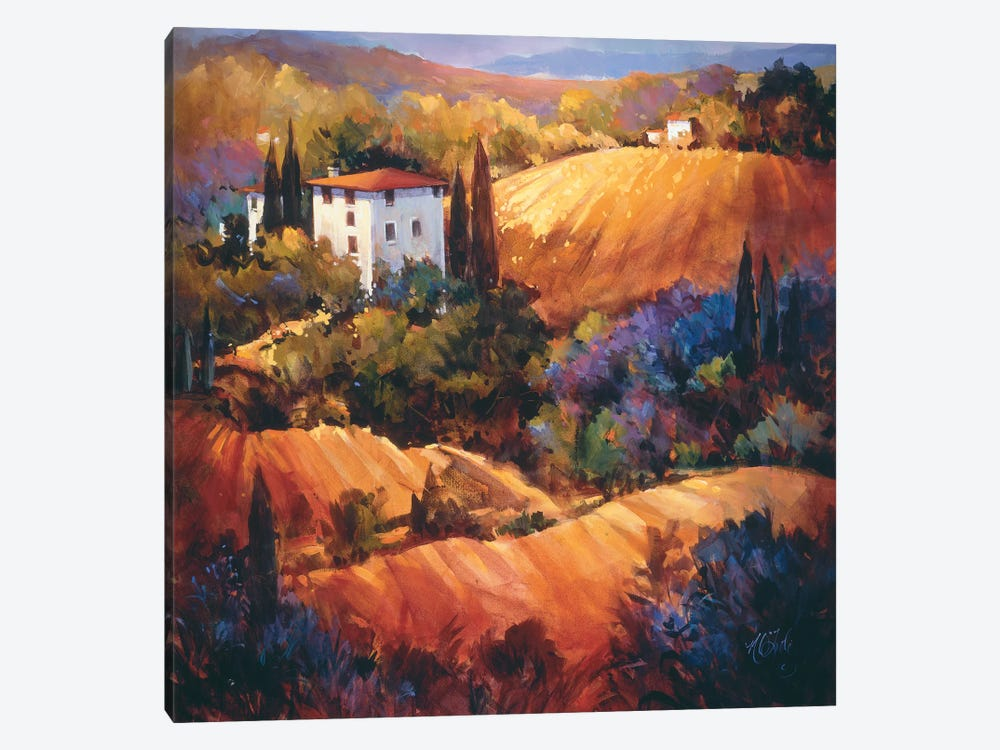 Evening Glow Tuscany by Nancy O'Toole 1-piece Canvas Artwork