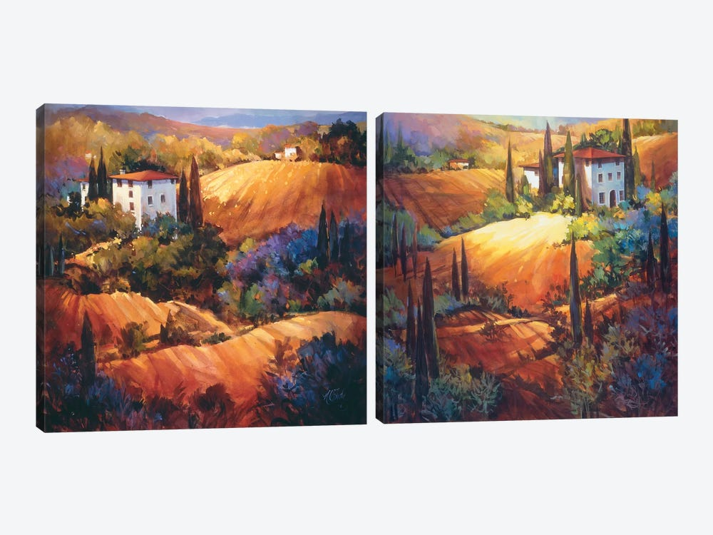 Evening Glow In Tuscany Diptych by Nancy O'Toole 2-piece Art Print