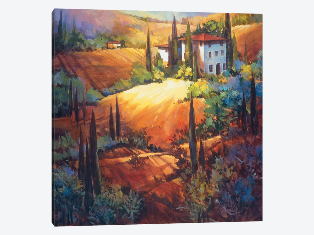 Morning Light Tuscany by Nancy O'Toole 1-piece Canvas Print