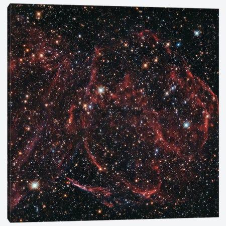 A Long-Dead Star (Remnants Of A Supernova), DEM L316A Canvas Print #NAS24} by NASA Art Print