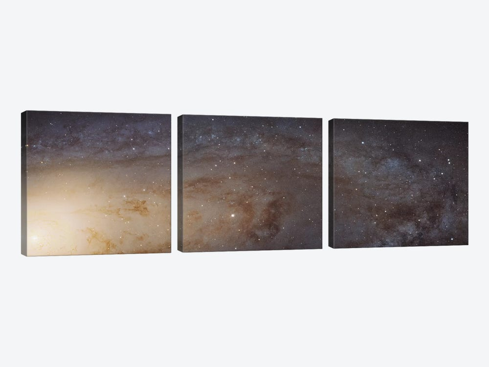 Andromeda Galaxy (Messier 31) by NASA 3-piece Art Print