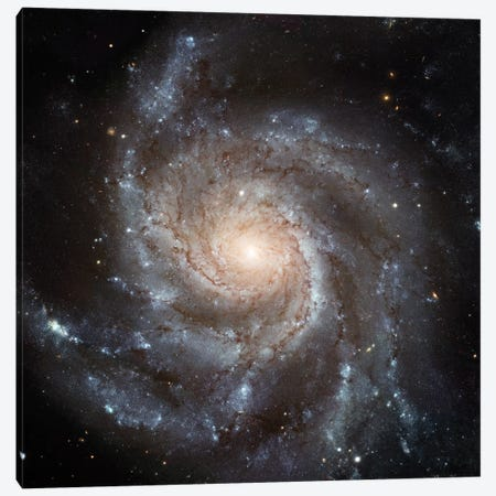 Big, Beautiful Spiral, Messier 101 (Pinwheel Galaxy) Canvas Print #NAS28} by NASA Canvas Art