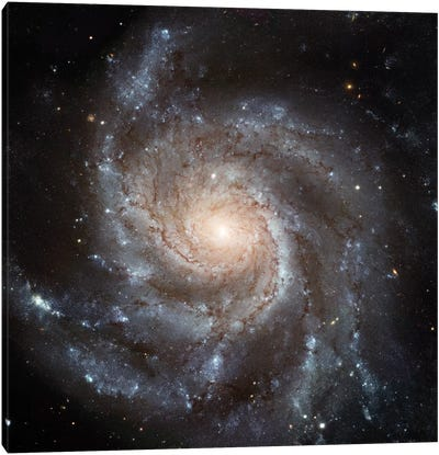 Big, Beautiful Spiral, Messier 101 (Pinwheel Galaxy) Canvas Print #NAS28