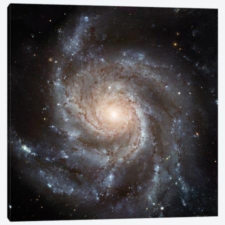 Big, Beautiful Spiral, Messier 101 (Pinwheel Galaxy) Canvas Print #NAS28} by NASA Canvas Art