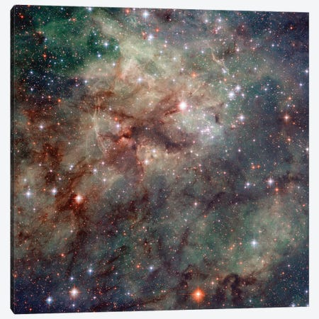 Close-Up Of NGC 2060 & NGC 2070, Tarantula Nebula (30 Doradus) Canvas Print #NAS31} by NASA Art Print