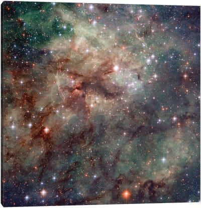 Close-Up Of NGC 2060 & NGC 2070, Tarantula Nebula (30 Doradus) Canvas Art Print