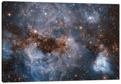 Maelstrom Of Glowing Gas And Dark Dust, Papillon Nebula, N159 Canvas Print #NAS40