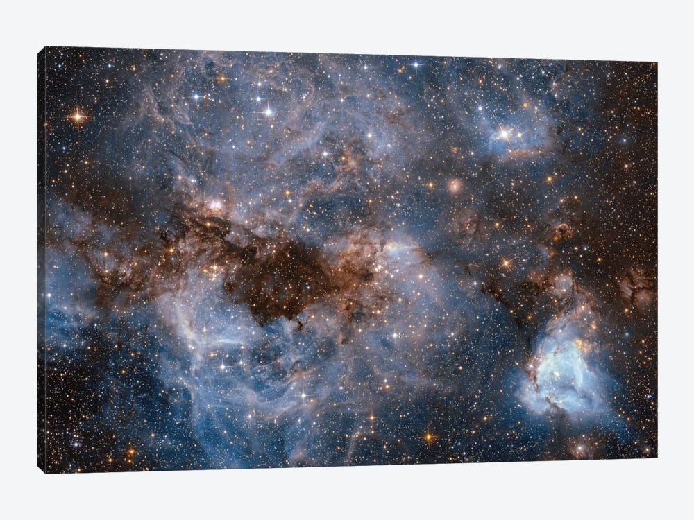 Maelstrom Of Glowing Gas And Dark Dust, Papillon Nebula, N159 by NASA 1-piece Canvas Wall Art