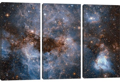 Maelstrom Of Glowing Gas And Dark Dust, Papillon Nebula, N159 Canvas Art Print
