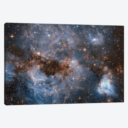 Maelstrom Of Glowing Gas And Dark Dust, Papillon Nebula, N159 Canvas Print #NAS40} by NASA Canvas Art