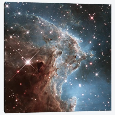 NGC 2174 (Monkey Head Nebula) (Hubble Space Telescope 24th Anniversary Image) Canvas Print #NAS42} by NASA Canvas Art