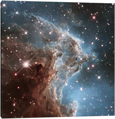 NGC 2174 (Monkey Head Nebula) (Hubble Space Telescope 24th Anniversary Image) Canvas Art Print