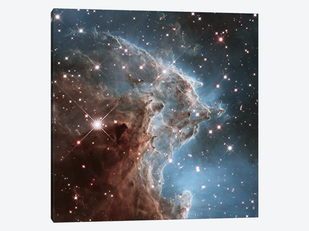 NGC 2174 (Monkey Head Nebula) (Hubble Space Telescope 24th Anniversary Image) by NASA 1-piece Canvas Artwork