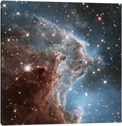 NGC 2174 (Monkey Head Nebula) (Hubble Space Telescope 24th Anniversary Image) Canvas Art Print