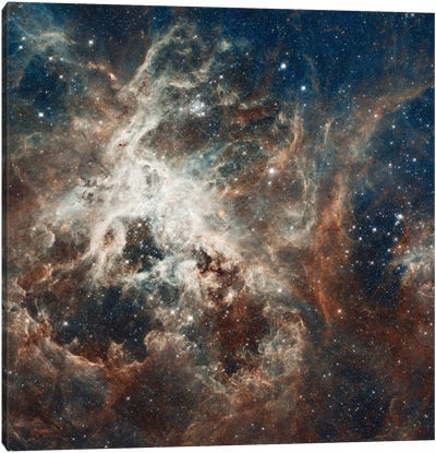 Prolific Star-Forming Region, 30 Doradus (Tarantula Nebula) (Hubble Space Telescope 22nd Anniversary Image) Canvas Art Print