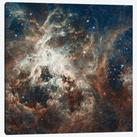 Prolific Star-Forming Region, 30 Doradus (Tarantula Nebula) (Hubble Space Telescope 22nd Anniversary Image) Canvas Print #NAS47} by NASA Canvas Art Print