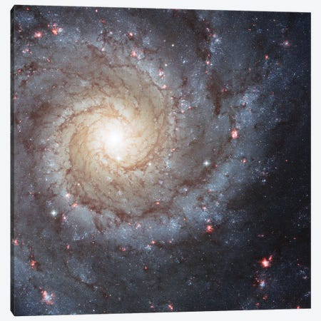 Radiating Hydrogen Clouds, Messier 74 (The Phantom Galaxy) Canvas Print #NAS48} by NASA Canvas Artwork