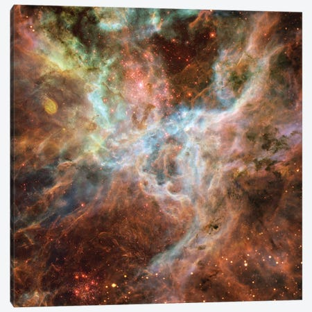 Symphony Of Colours, Hodge 301, R136, Tarantula Nebula Canvas Print #NAS49} by NASA Canvas Wall Art