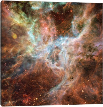 Symphony Of Colours, Hodge 301, R136, Tarantula Nebula Canvas Art Print