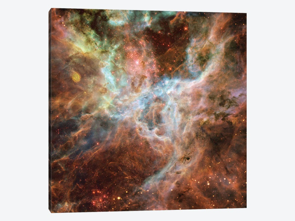 Symphony Of Colours, Hodge 301, R136, Tarantula Nebula by NASA 1-piece Art Print