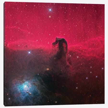 The Magnificent Horse Head Nebula Canvas Print #NAS52} by NASA Canvas Art Print