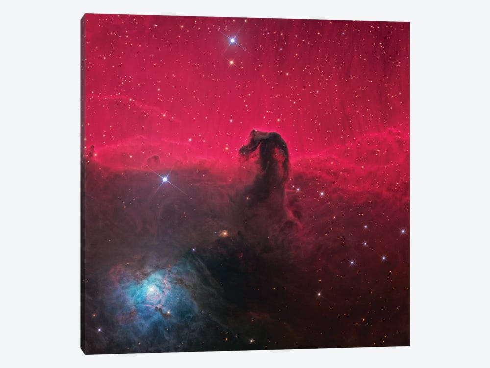 The Magnificent Horse Head Nebula 1-piece Canvas Art Print
