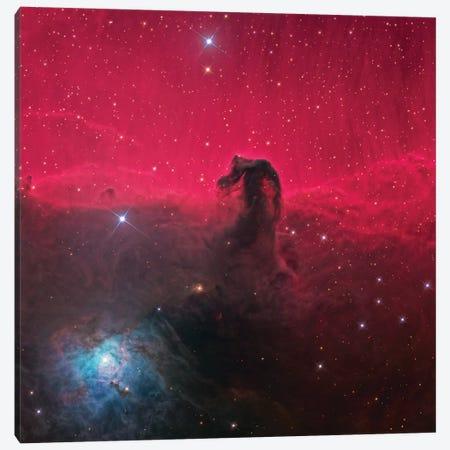 The Magnificent Horse Head Nebula Canvas Print #NAS52} by NASA Canvas Art Print