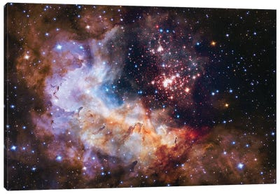 WR 20a And Surrounding Stars, Westerlund 2 Canvas Art Print