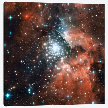 Young Star Cluster, NGC 3603 Nebula Canvas Print #NAS55} by NASA Canvas Wall Art
