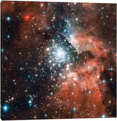 Young Star Cluster, NGC 3603 Nebula Canvas Art Print