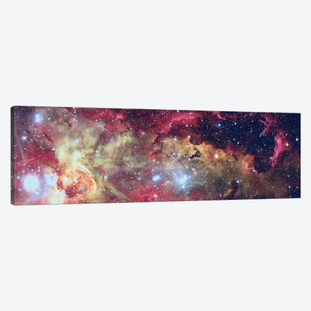 Fire Flowers Canvas Print #NAS60} by NASA Canvas Art