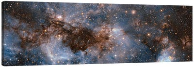 Glowing Stardust Canvas Art Print