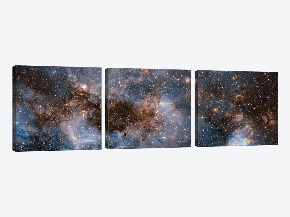 Glowing Stardust by NASA 3-piece Canvas Artwork