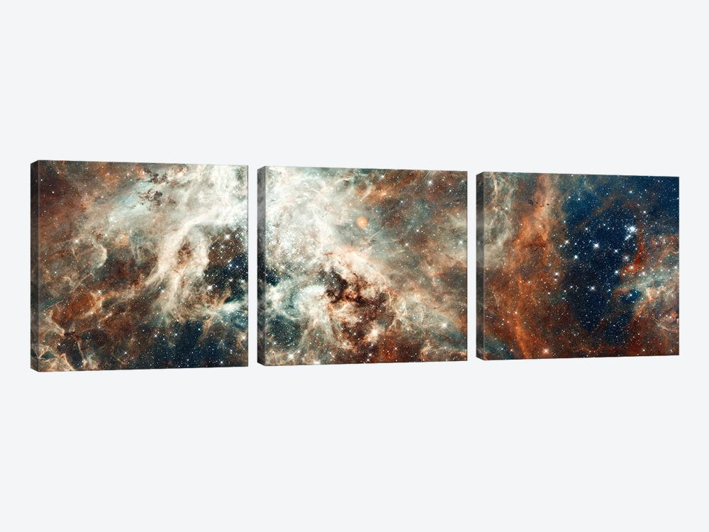 Stardust Flare by NASA 3-piece Canvas Art Print