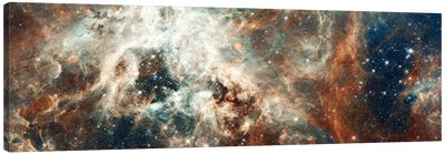 Stardust Flare Canvas Art Print