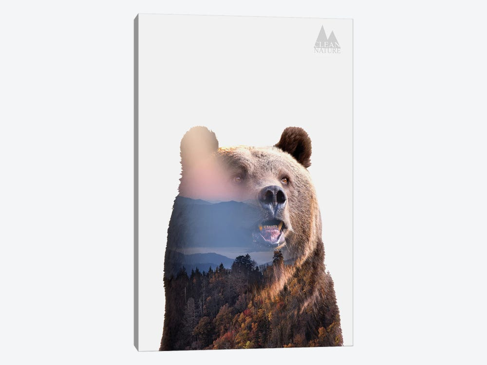 Bear by Clean Nature 1-piece Canvas Wall Art