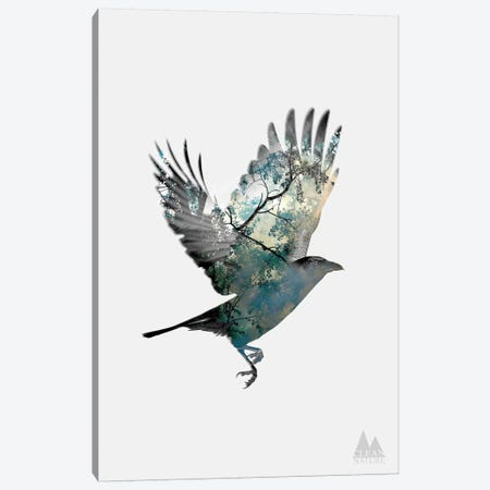 Bird Canvas Print #NAT2} by Clean Nature Canvas Art