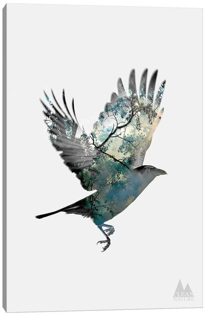 Bird Canvas Print #NAT2
