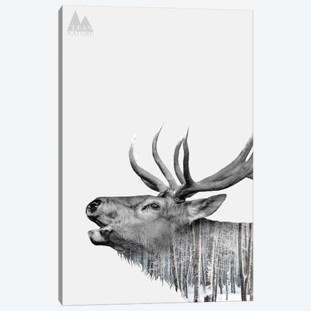 Deer Canvas Print #NAT3} by Clean Nature Canvas Art