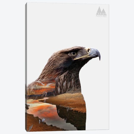 Eagle Canvas Print #NAT4} by Clean Nature Canvas Art Print