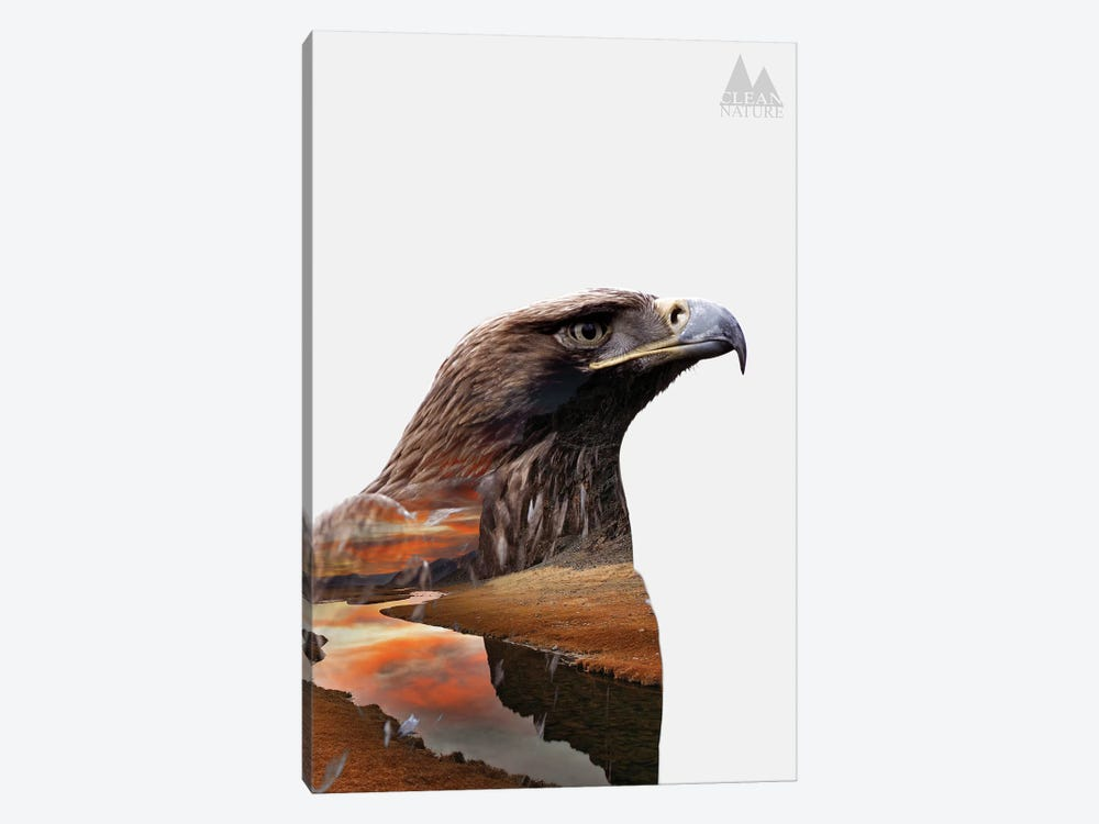 Eagle by Clean Nature 1-piece Canvas Art Print
