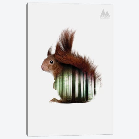 Squirrel Canvas Print #NAT6} by Clean Nature Canvas Art Print