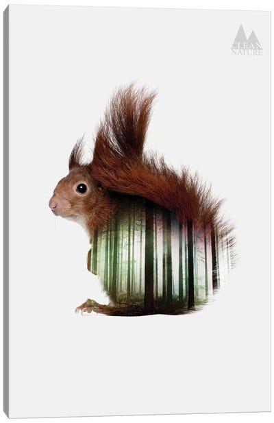 Squirrel Canvas Print #NAT6