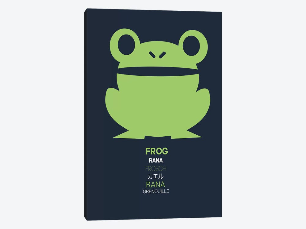 Multilingual Frog I by Naxart 1-piece Canvas Artwork