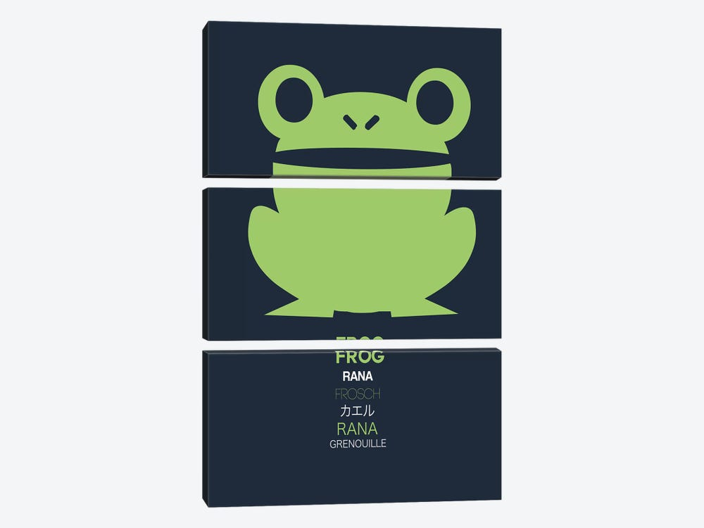 Multilingual Frog I by Naxart 3-piece Canvas Wall Art