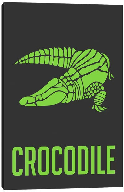 Crocodile II Canvas Art Print
