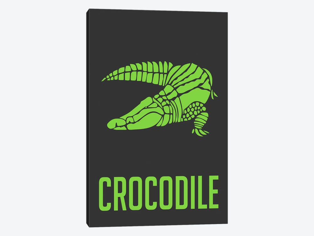 Crocodile II 1-piece Canvas Artwork