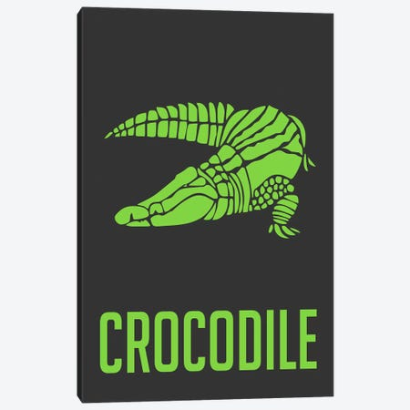 Crocodile II Canvas Print #NAX429} by Naxart Canvas Art Print
